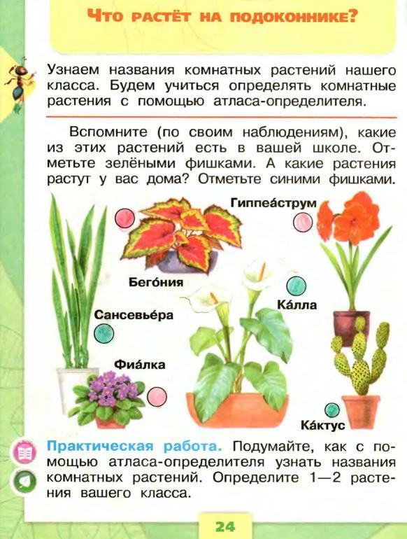 Учебник Окружающий мир 3 класс Плешаков Новицкая часть 1
